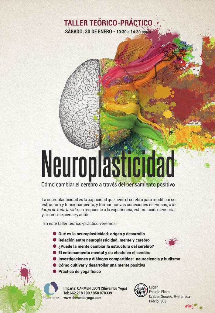 CARTEL-NEUROPLASTICIDAD